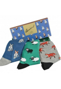 Bamboozld Wild Thing Socks gift box (3 pack)